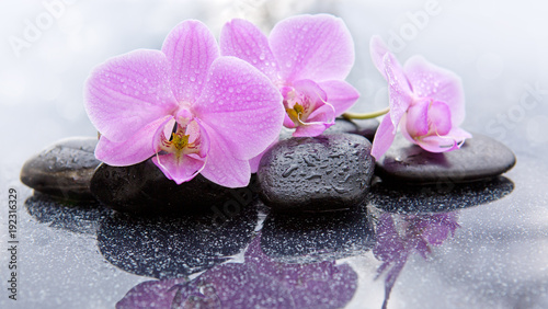 Fotobehang Zen Spa background with pink orchid and stone.