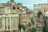 the Roman Forum Rome antique  architecture ruins Italy - 192317515