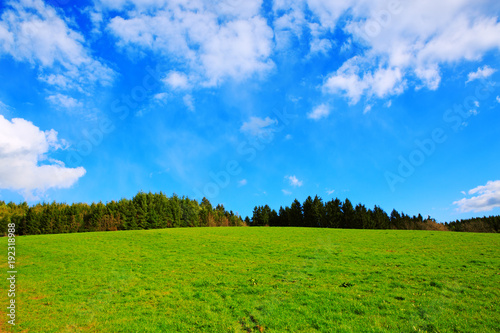 Green Grass Field Landscape and blue sky.