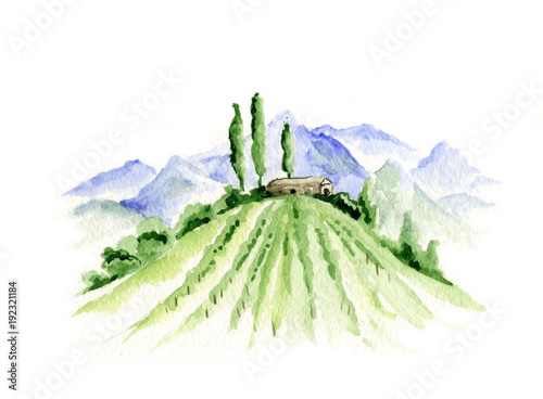 Foto op Canvas Wit Abstract landscape with vineyard / Watercolor illustration, mountain landscape with fields