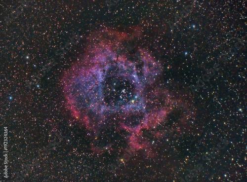 Foto op Aluminium Heelal Rosette Nebula