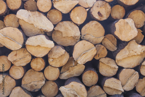 Keuken foto achterwand Brandhout textuur Storage of logs. Collapsed tree trunks