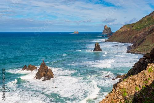 Aluminium Canarische Eilanden Rocky coastline of Tenerife, Canary Islands, Spain.