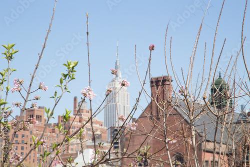 Foto op Aluminium New York Spring in New York
