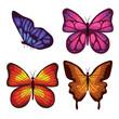 beautiful butterflies flying set vector illustration design