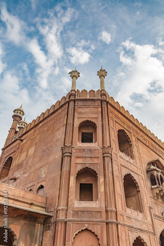 architectural detail of the facade of the Jama Masjid, New Delhi, India