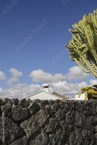 Aluminium Canarische Eilanden white house, blue sky and green cactus on Lanzarote (Canary Islands)