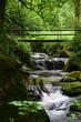 Geroldsauer Wasserfälle in Baden-Baden - 192374787