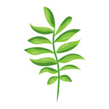 tree branch with green leaves plant natural vector illustration - 192375309