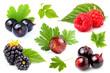 Fresh berries close-up.