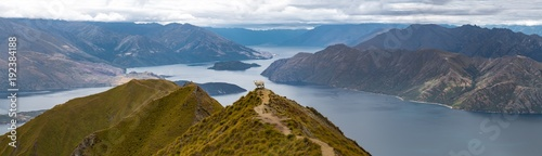 Papiers peints Photos panoramiques Sheep on mountain in front of lake Wanaka