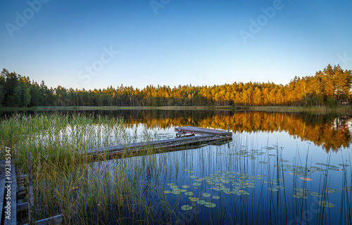 Foto op Canvas Natuur A jetty on a small lake in the woods