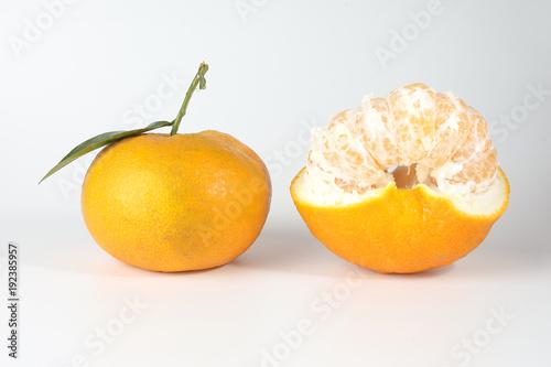 Giant Mandarin Orange