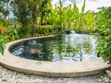 koi fish carps swimming in garden pond - 192393333