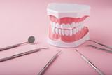歯の模型と歯科用器具 - 192398747