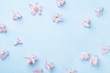 Beautiful pink flowers on blue table top view. Pastel colors. Flat lay style. Mother or woman day greeting card.