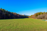 Bright winter color landscape scene of a green field with trees,forest and a view towards a mountain (Schneeberg,Austria) , sunny clear day with blue sky - 192418786