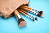 Cosmetic bag with different brushes of professional makeup artist on color background - 192419938