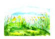 Watercolor landscape with the image of wild grasses, yellow flowers, green plants, dandelions, fields. Against the background of the blue sky. Abstract paint spots, artwork. Vintage postcard, Logo
