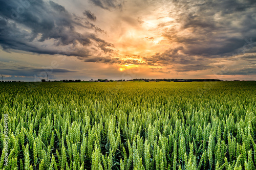 strong sun behind storm clouds with a field in the foreground