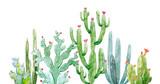 Watercolor cactus composition - 192451185