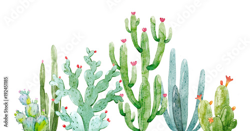Watercolor cactus composition - 192451185