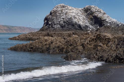 Fotobehang Cappuccino Waitakere Huia. Whatipu coast. Rocks