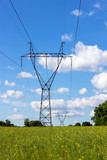 Power pylons and high voltage lines in the green grass field with blue sky and cloud - 192458304