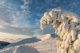 Winter ridges of the Krkonose Mountains, view of Obri Dul in the Krkonose . Czech Republic. Trees covered with frost - 192459172