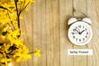 Daylight Savings Time Spring Forward concept top down view with white clock and yellow forsythia flowers on wooden board