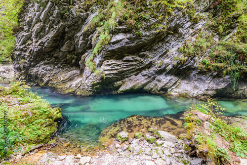Fotobehang Bergrivier Mountain river with beautiful blue water. The picturesque vintgar gorge in the Triglav national natural Park, a popular trekking route, Slovenia.