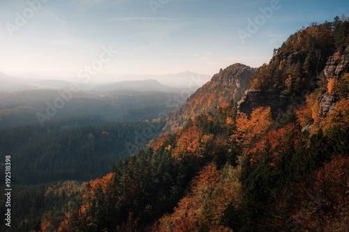 Foto op Aluminium Herfst A view of the mountainside. Trees in autumn