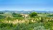 Krajobrazy Toskanii - 192521907