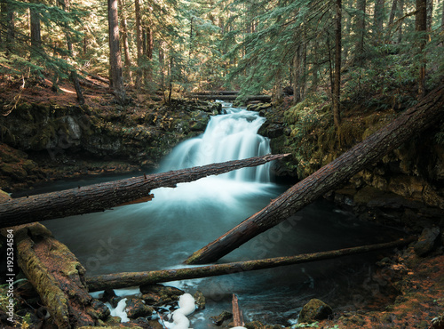 A rushing rain forest waterfall in western Oregon  - 192534584