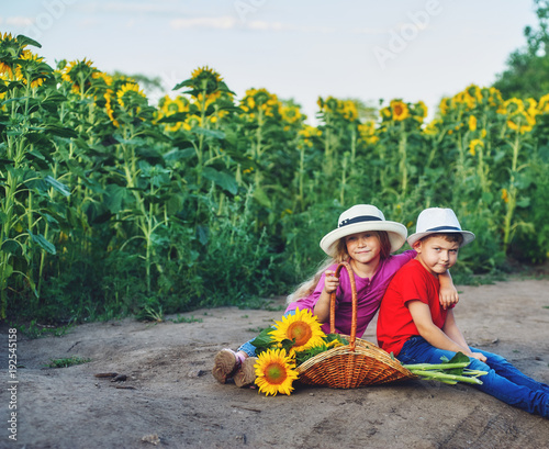 Cheerful children in the field with sunflowers .Boy and girl sitting on a dirt road