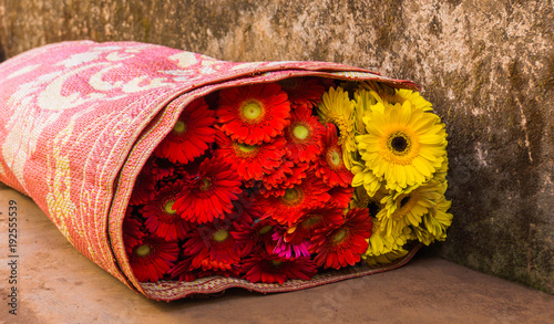 Fotobehang Gerbera fresh picked red and yellow gerbera daisies rolled up in a mat to transport on the back of a motor scooter