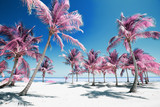 Palm trees on idyllic paradise beach in infrared colors - 192564764