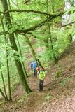 gemeinsame Erlebniswanderung im Wald - 192572549