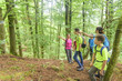Wegsuche beim Wandern im Wald