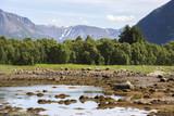 road to Niksund to the Lofoten islands in Norway - 192588750