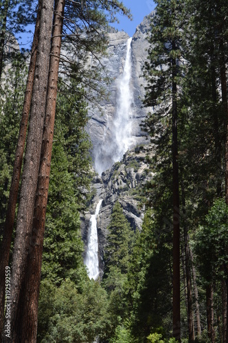 Yosemite National Park. CA - 192592559