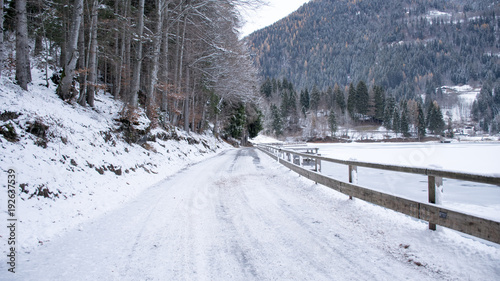 Tuinposter Weg in bos Ghiaccio