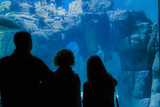 Silhouettes of people who observe tropical sea fish in the Oceanarium - 192657377