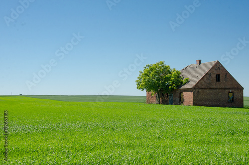 Keuken foto achterwand Gras Isolated and abandoned farmhouse in Poland.