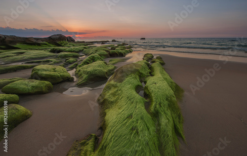 Foto Murales sunset seascape with natural coastal rocks covered by green moss.