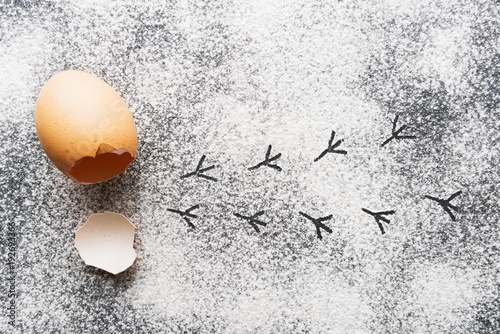 Eggshell with chicken trails on flour Poster