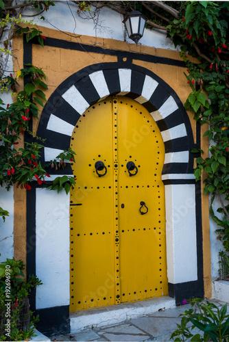 Tunisian gate
