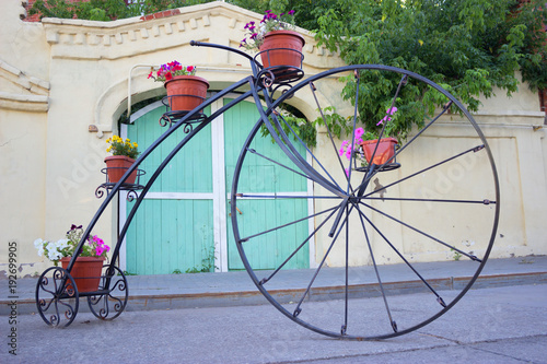 Foto op Plexiglas Fiets bycicle and flowers