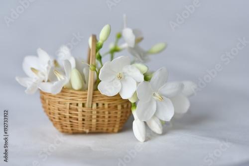 Wrightia flower in tiny bamboo basket