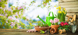 Gardening tools and spring flowers on the terrace - 192740905